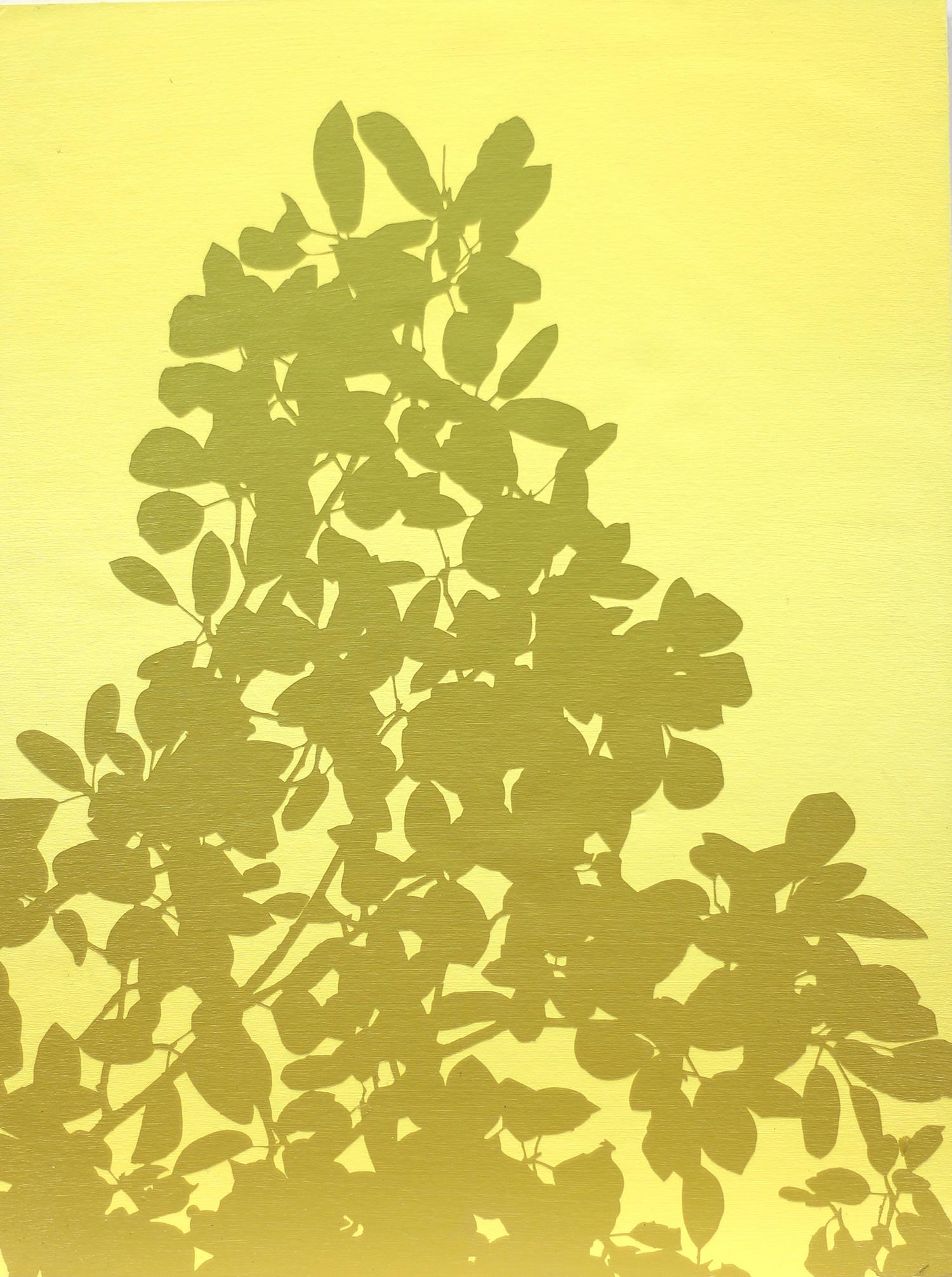 """Yellow Silhouette I 9"""" x 12"""" by Ben Cowan"""