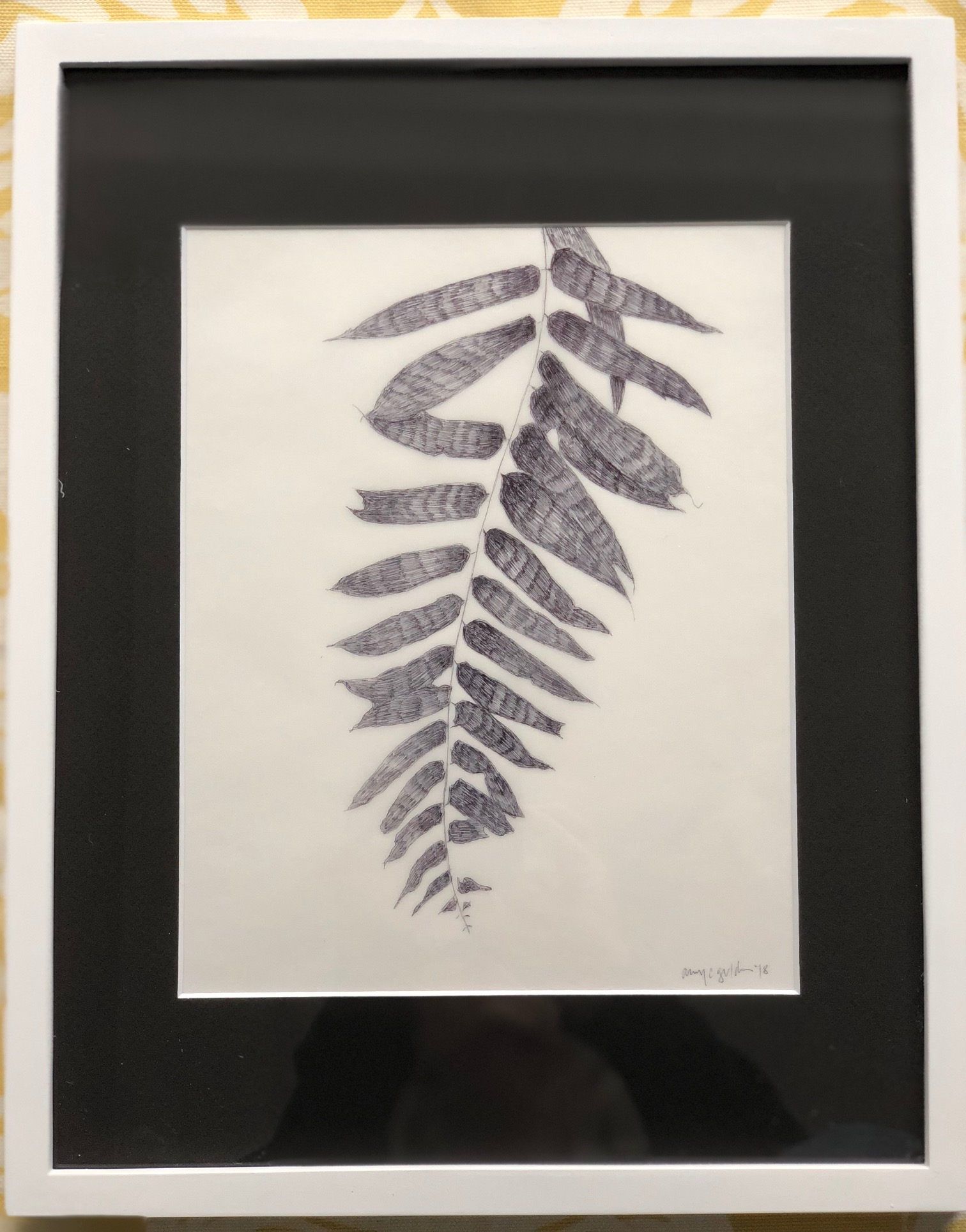 """Shadow Tracings F 11"""" x 14"""" by Amy Chase Gulden"""