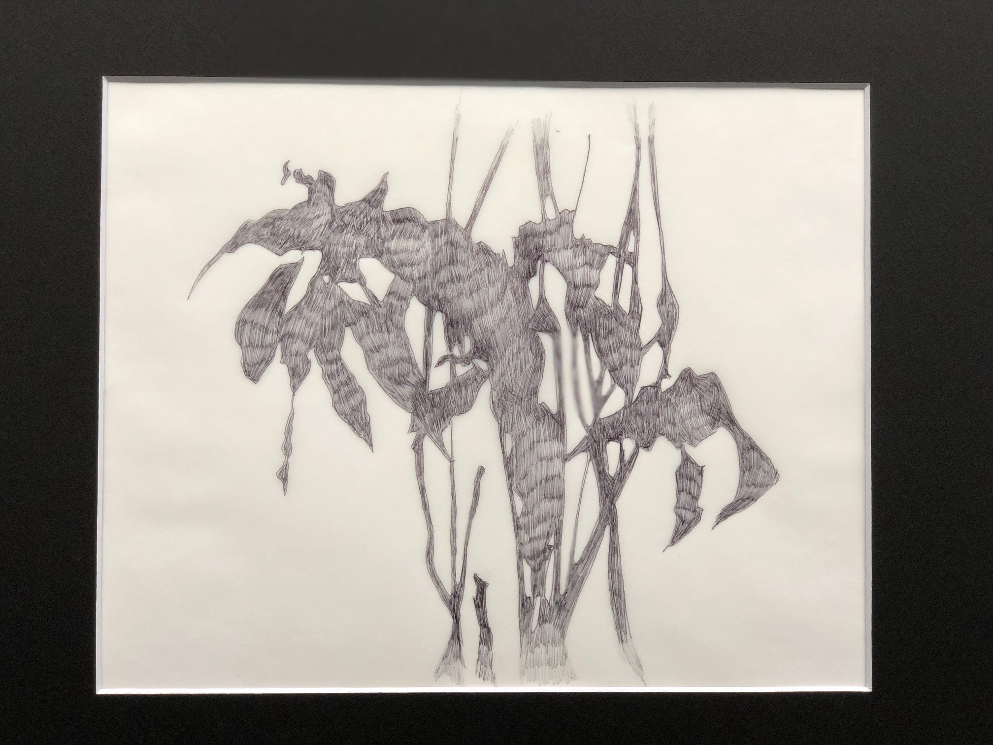 """Shadow Tracings D 11"""" x 14"""" by Amy Chase Gulden"""