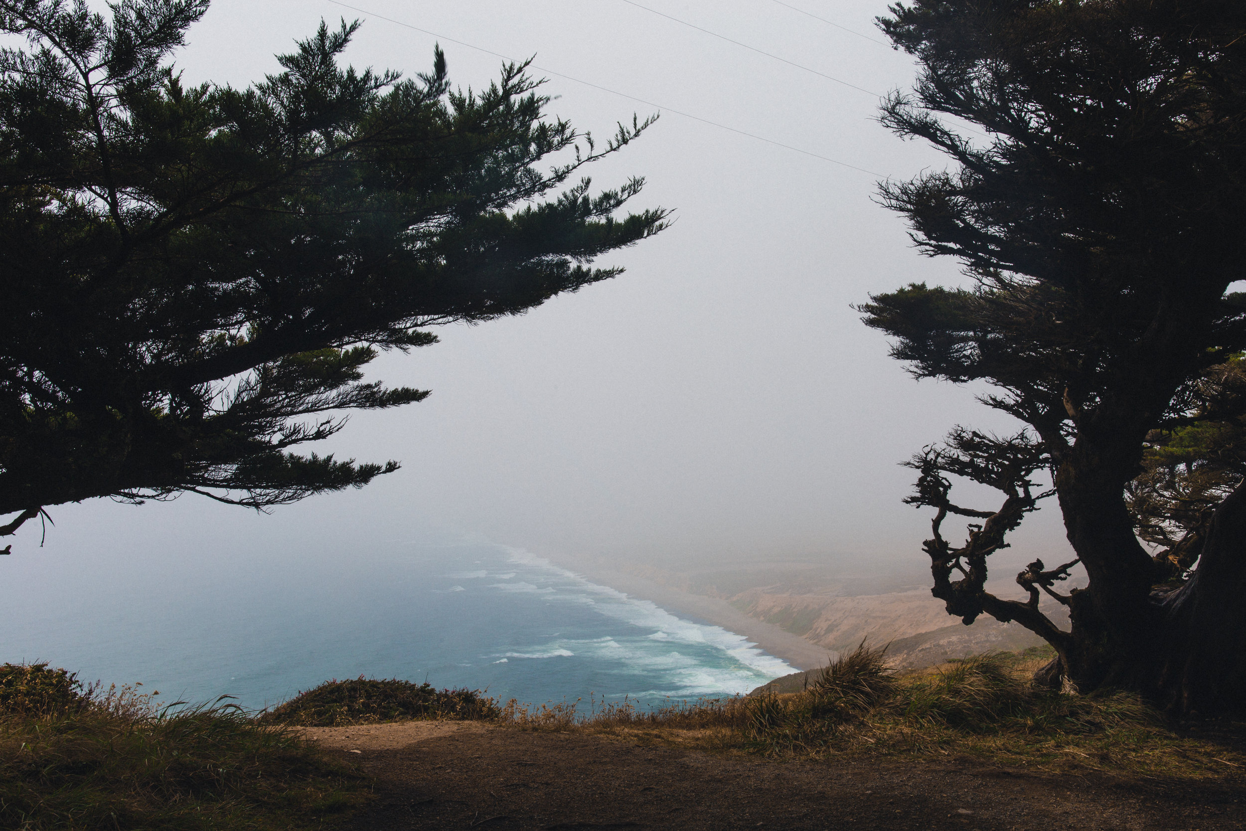 Point Reyes II by Andrew Ryan Shepherd