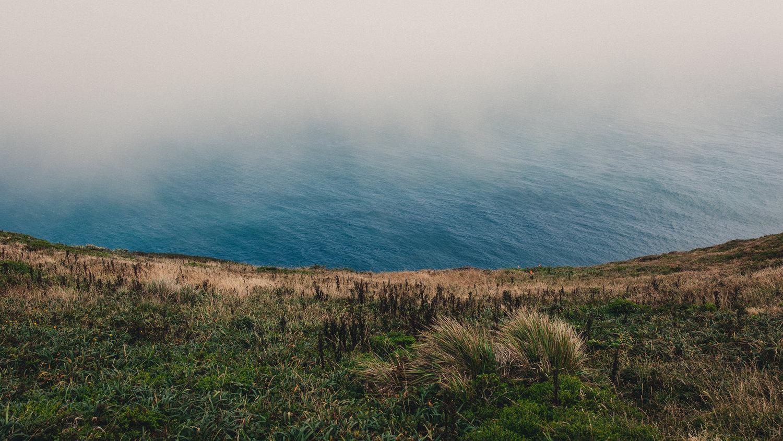 Point Reyes I by Andrew Ryan Shepherd