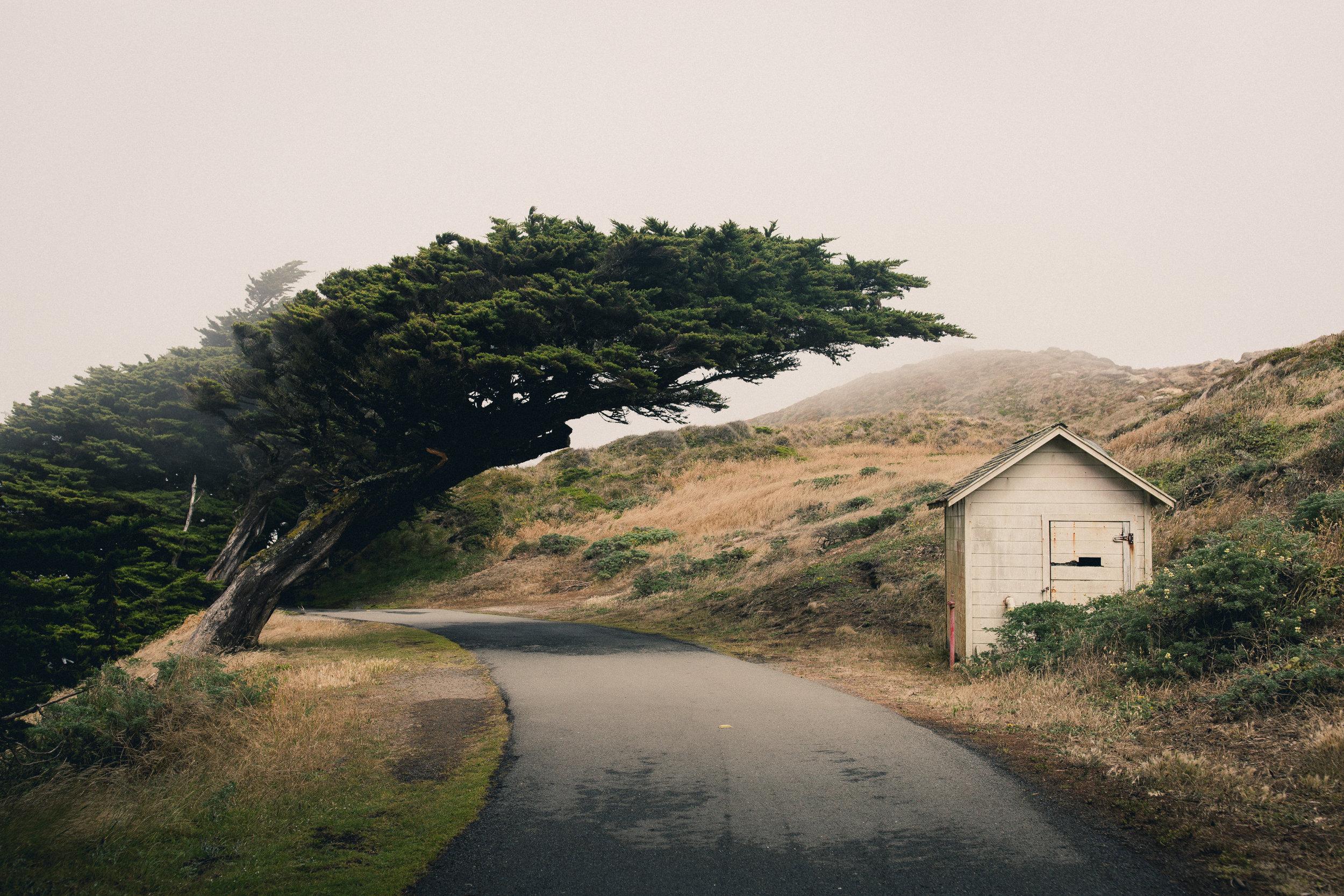 Untitled III by Andrew Ryan Shepherd