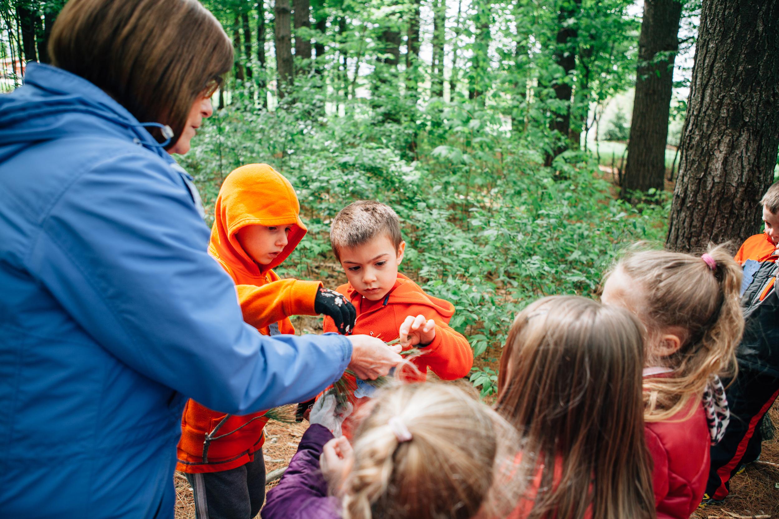 Suburban Cooperative Nursery School || Rocy River Preschool