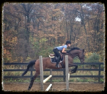 The success of Flatwork lessons! Abby and Smudge on a fall lesson day having a beautiful jump together.