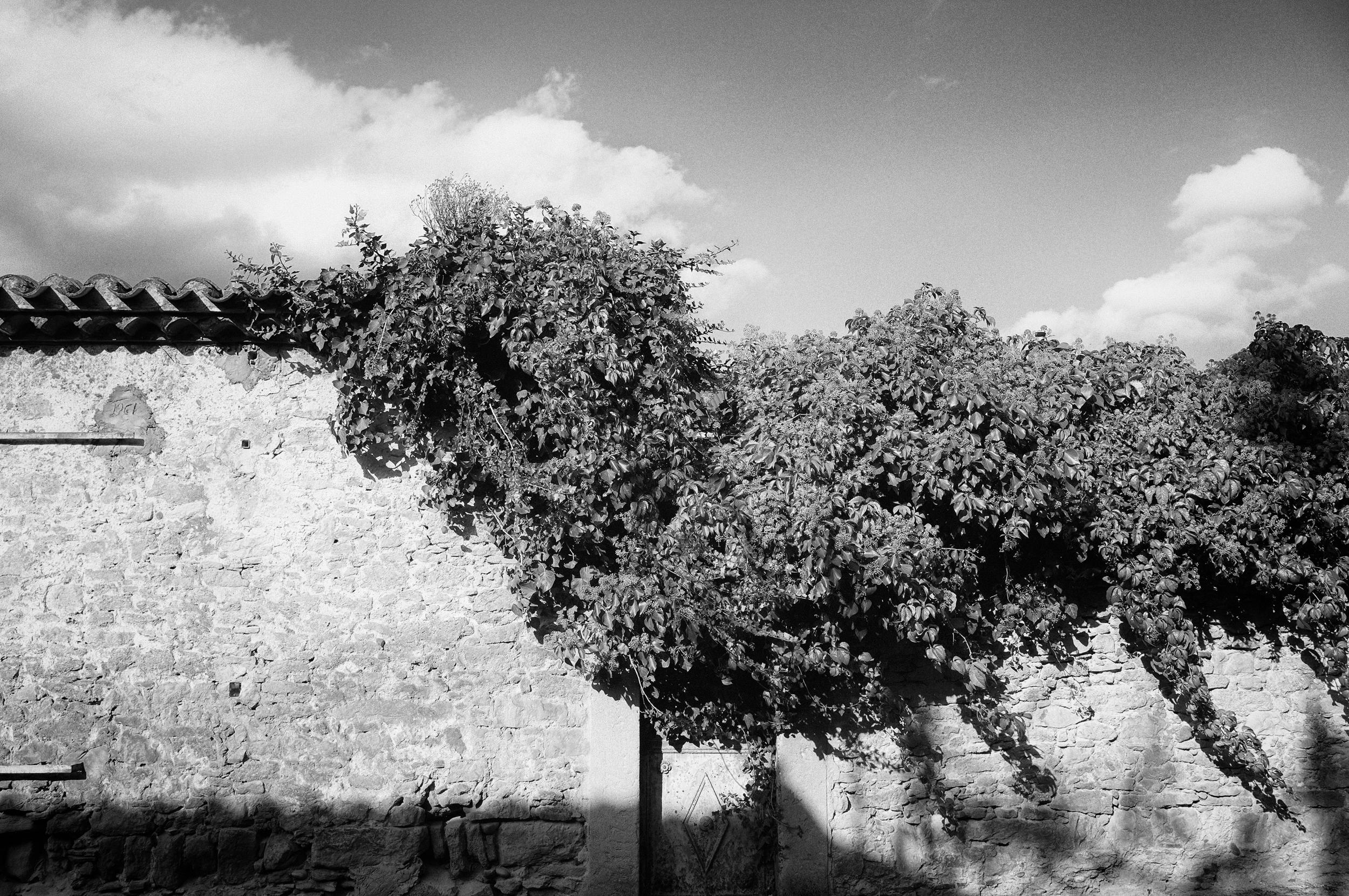 Textures. Carcassonne