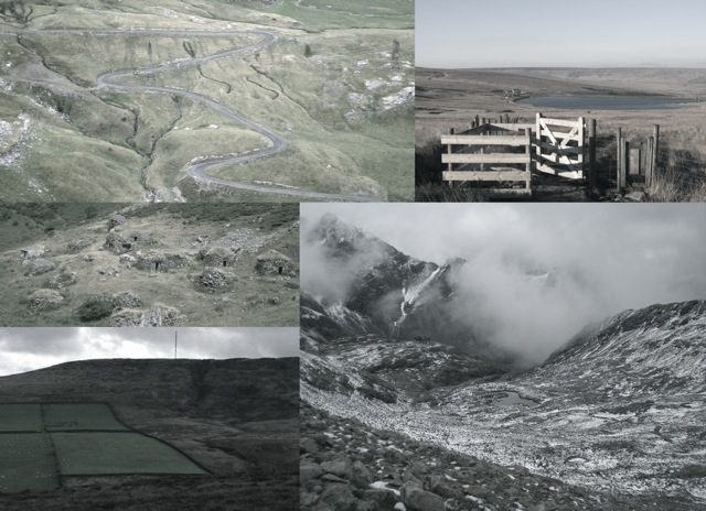 nature  | culture  | cultivation : our interventions in wild environments