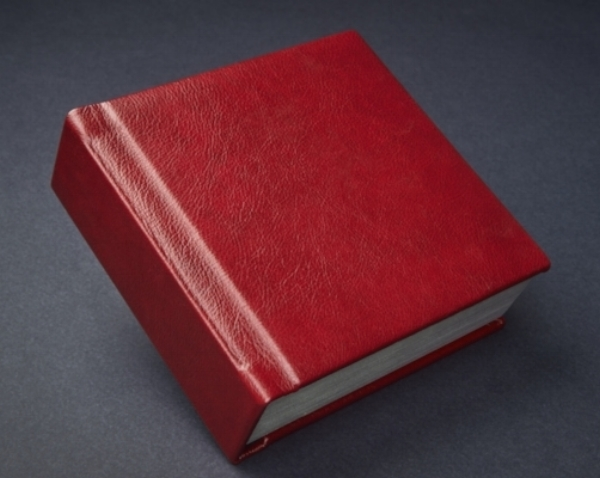 Sample album shown in deep red leather, flush mount pages, 70 pages (35 spreads)