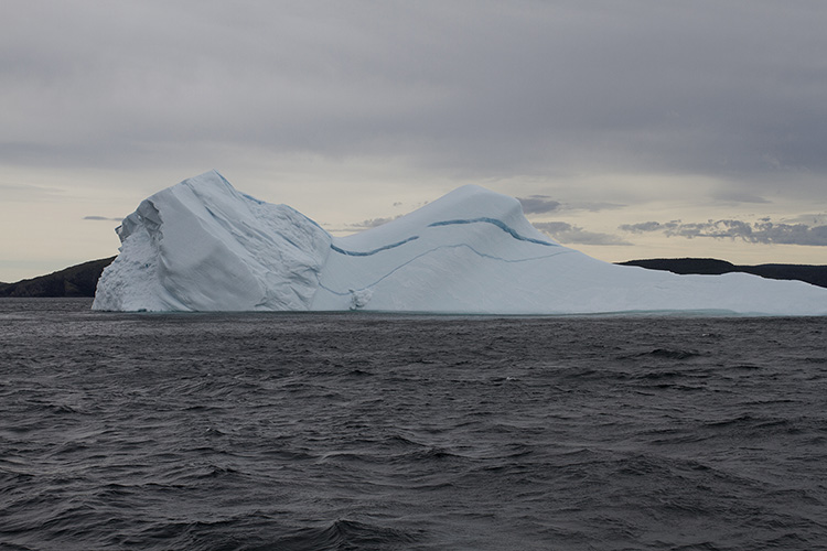 iceberg sm.jpg