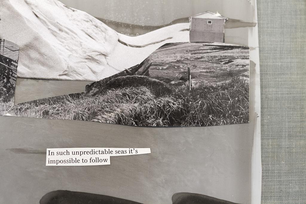 Collage ECU.jpg
