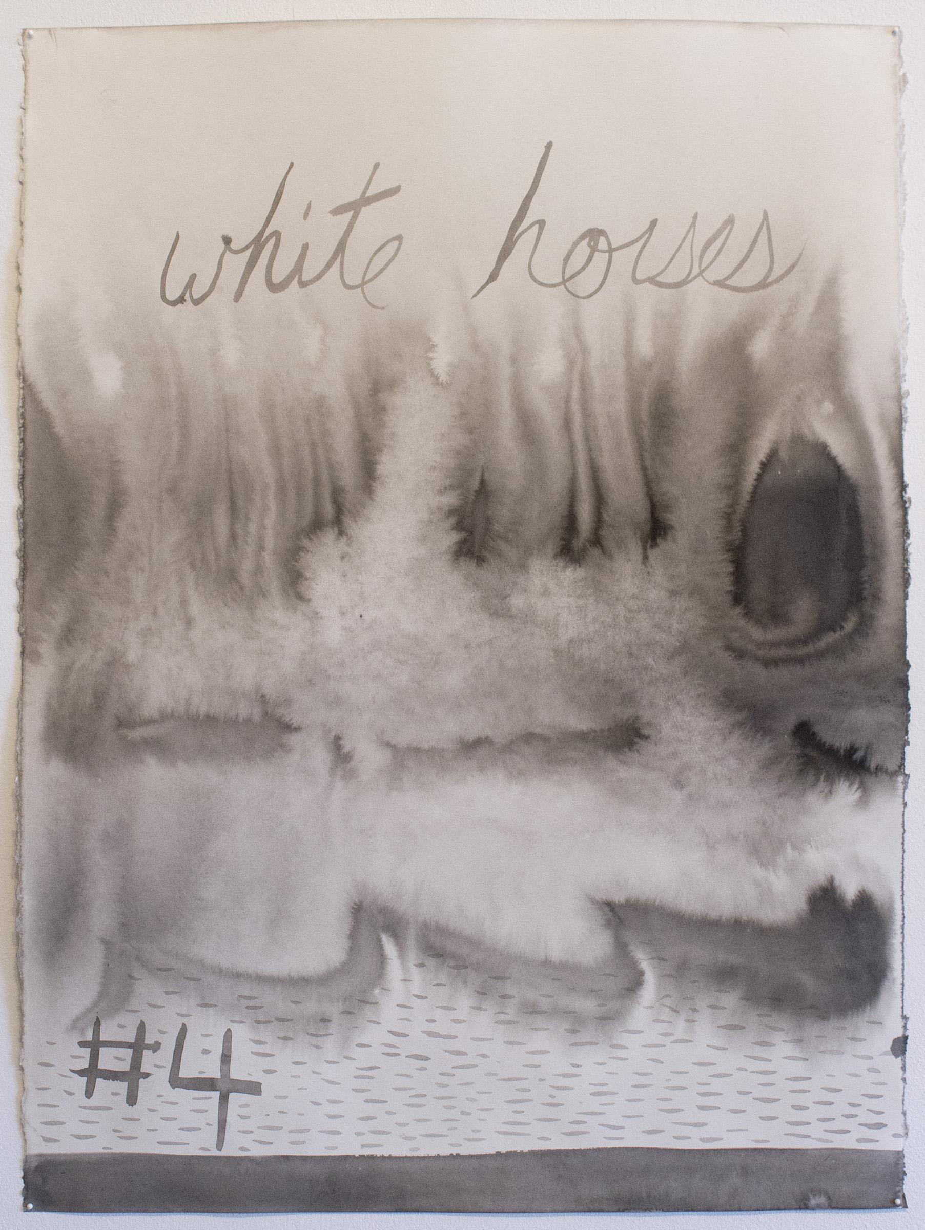Cooper white horses.jpg
