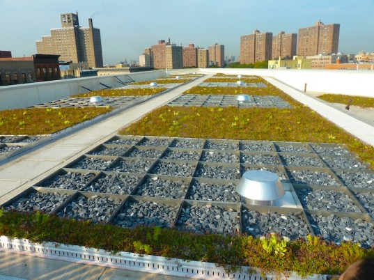The nonprofit  Osborne Association  and  DEP 's combined blue and green roof