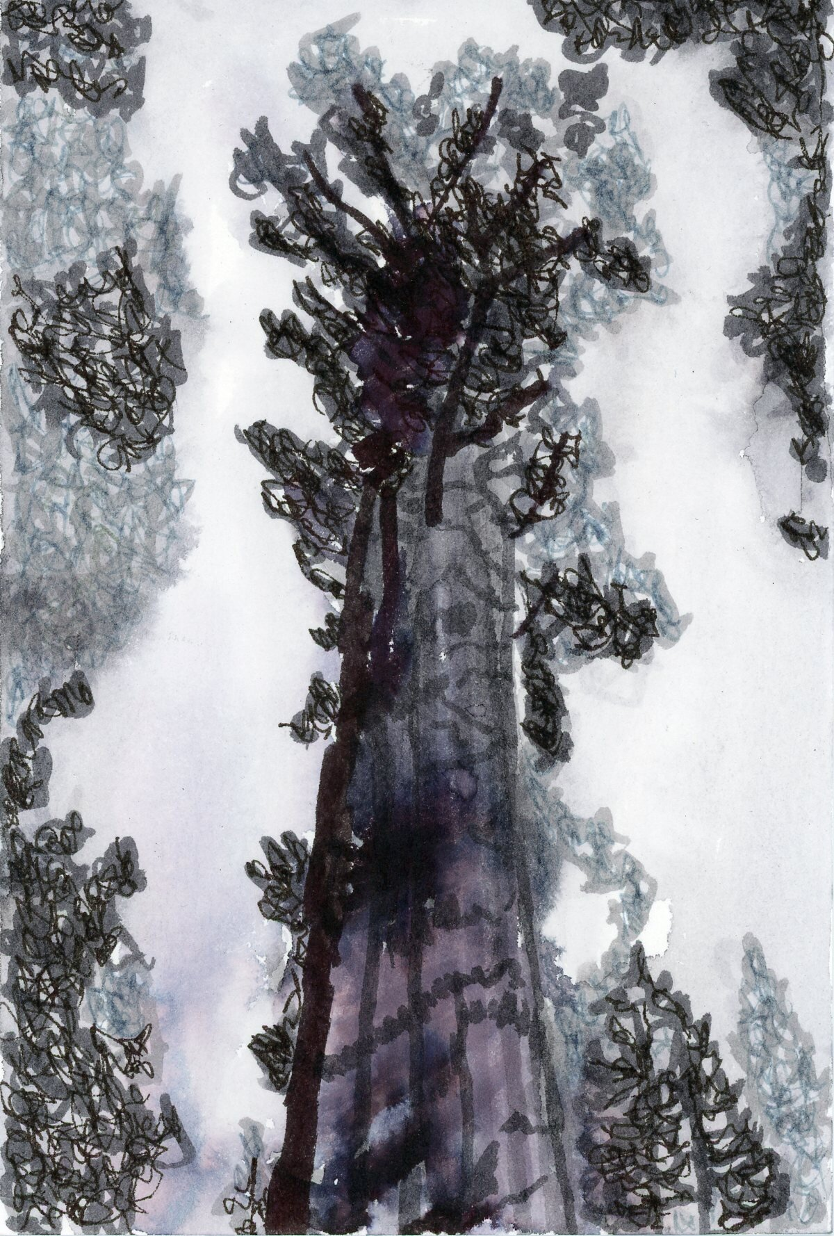 World's Largest Tree, 2019, watercolor brush markers and ink