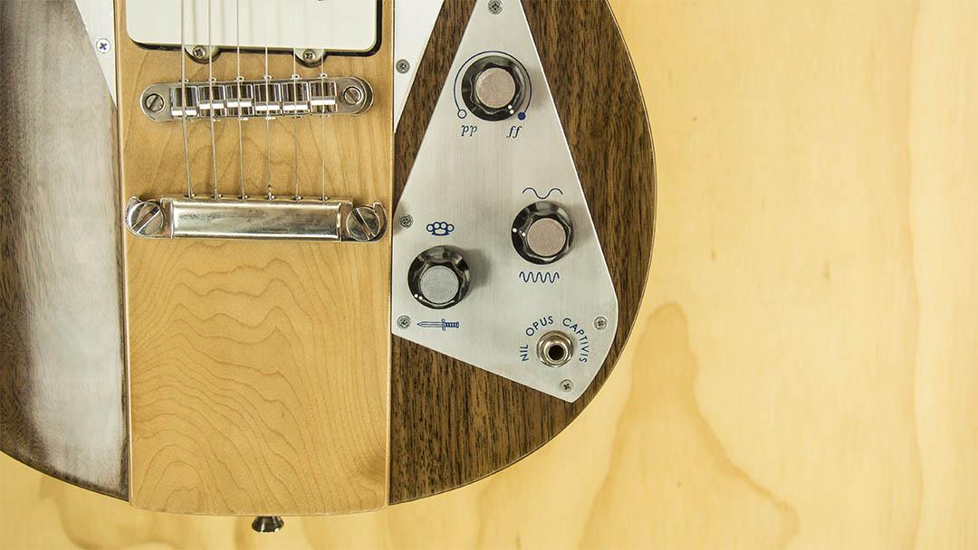 Guitar Control Plate