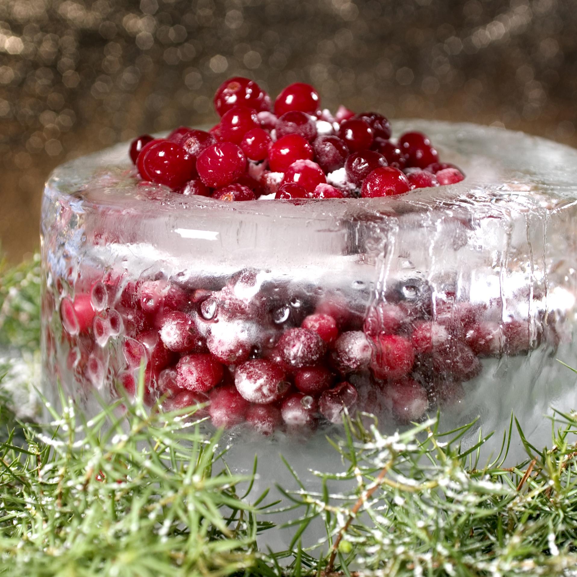 saaga-cranberries-in-icy-bowl.jpg