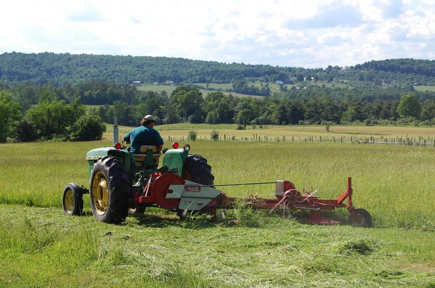 animal_farm_colin clark_tractor.jpg