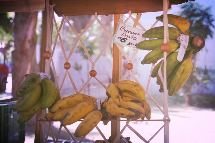 Banana Pratas at the organic farmer's market.