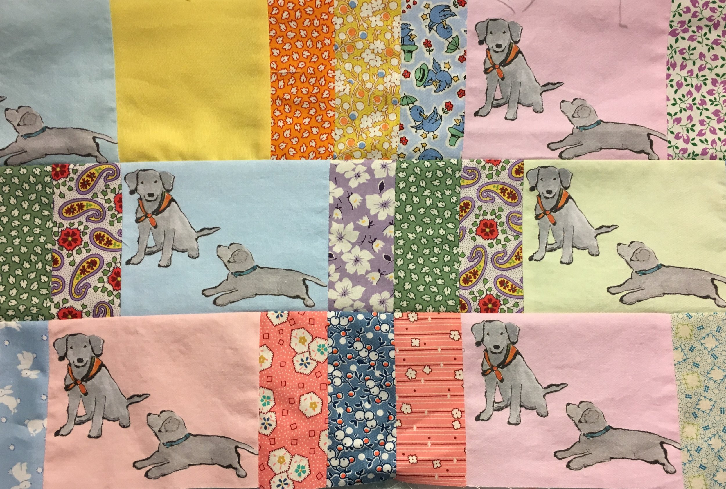 Section of Lab Puppies Quilt Stitched Together