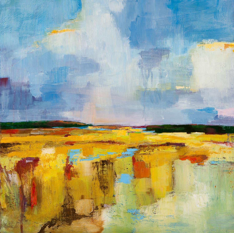 Sky Marsh
