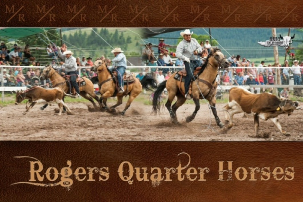 Learn more about Rogers Quarter Horses at  rogersquarterhorses.com
