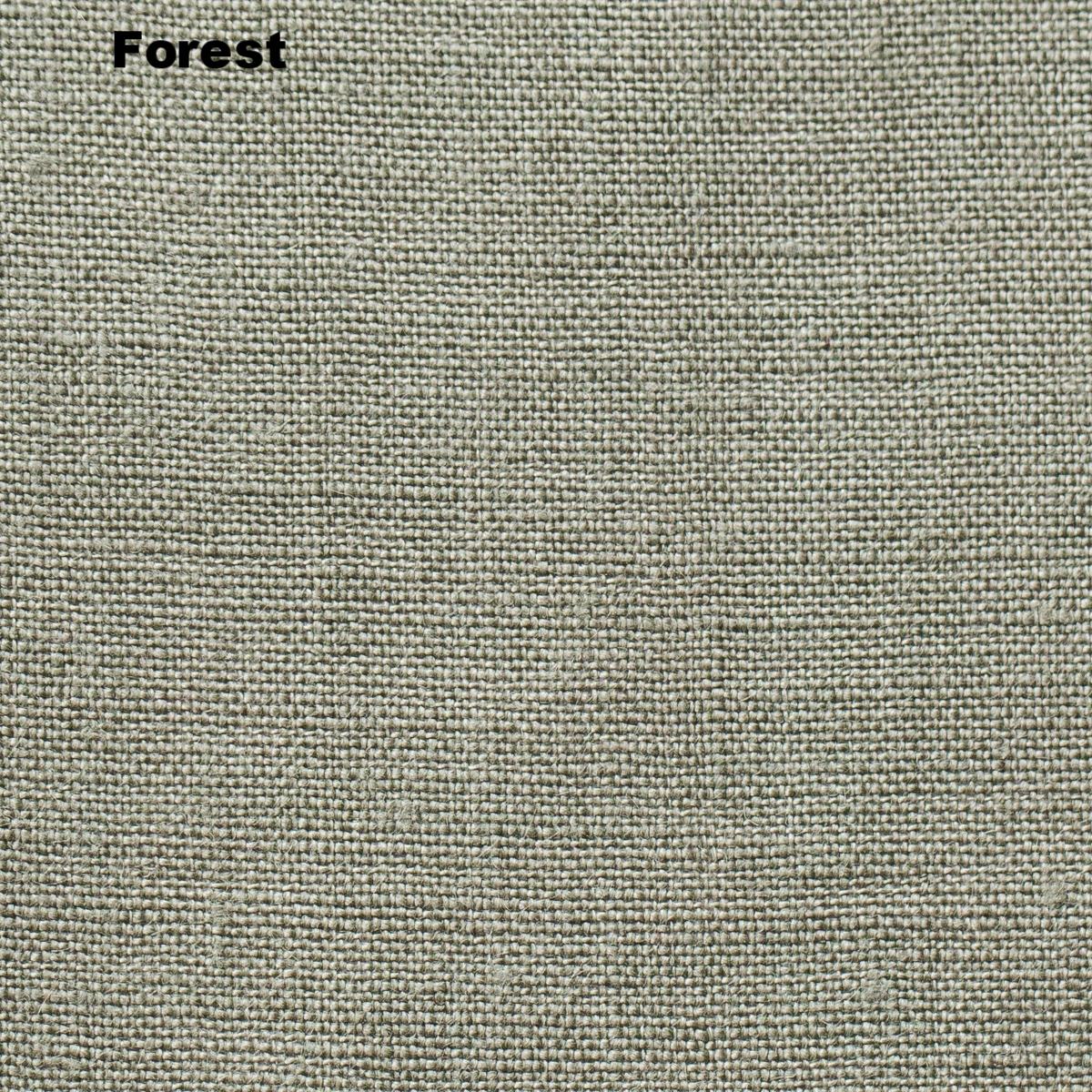 09_forest.jpg