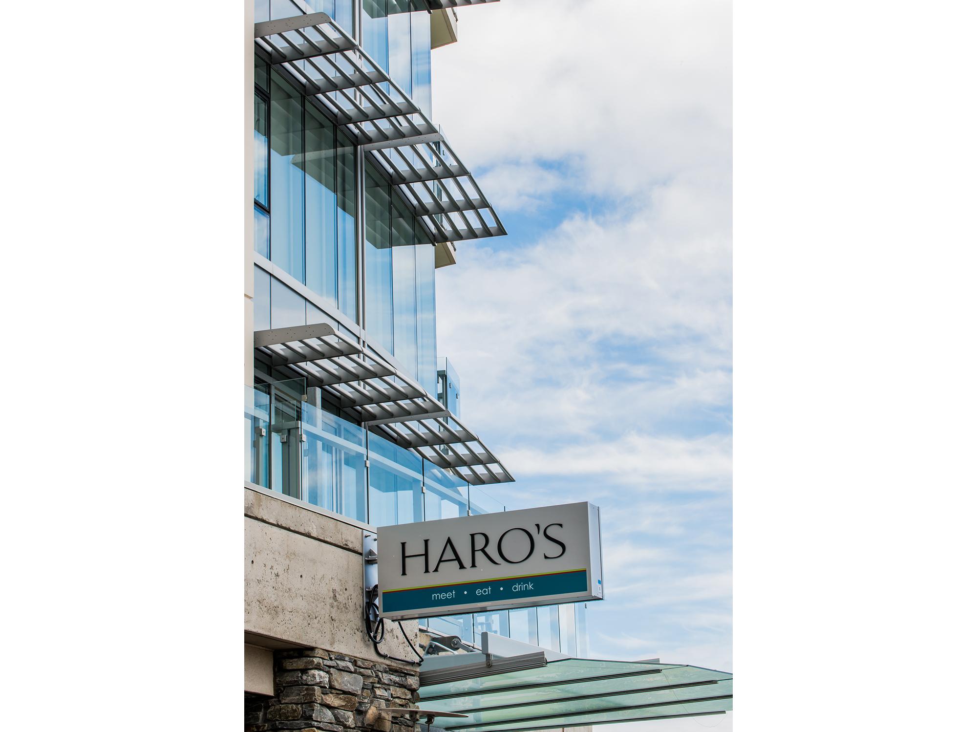 HAROS_103.jpg