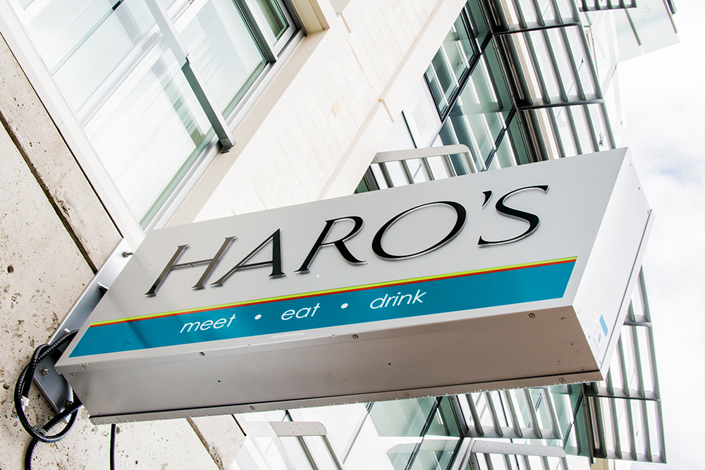 HAROS_105.jpg