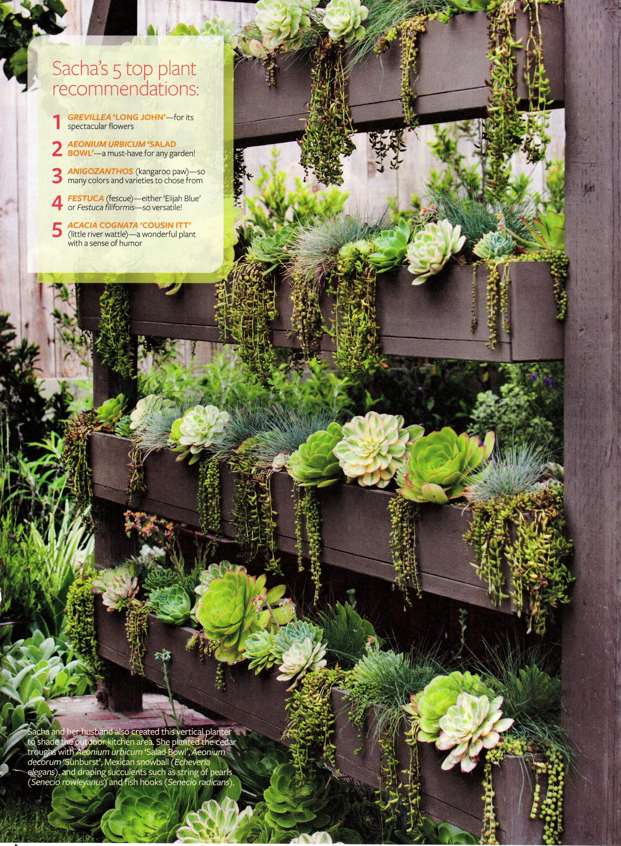 Outdoor Spaces_page 820160320_18263702.jpg