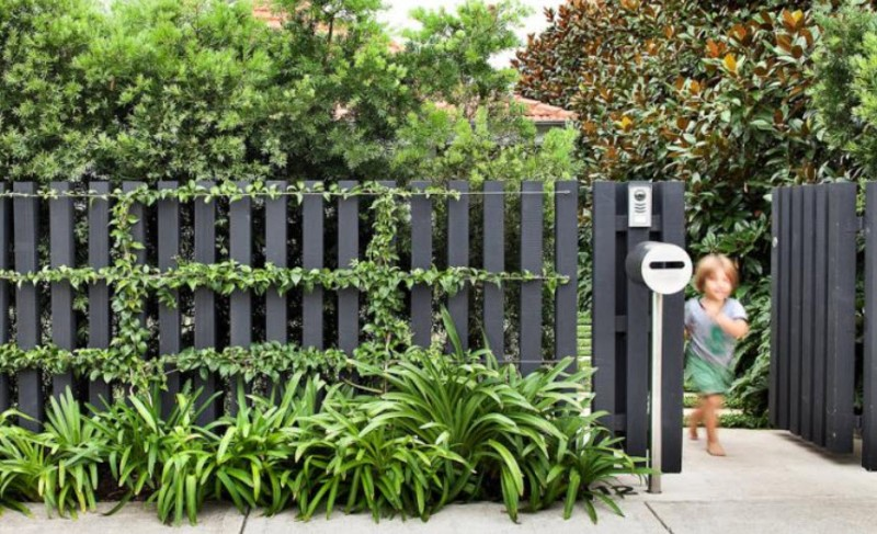 black fence 3.jpg