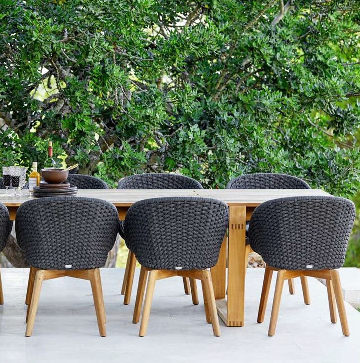 NEW Peacock Dining Collection   A beautiful visual collection with high comfort.   Click to shop this collection.    Lounge collection also available.