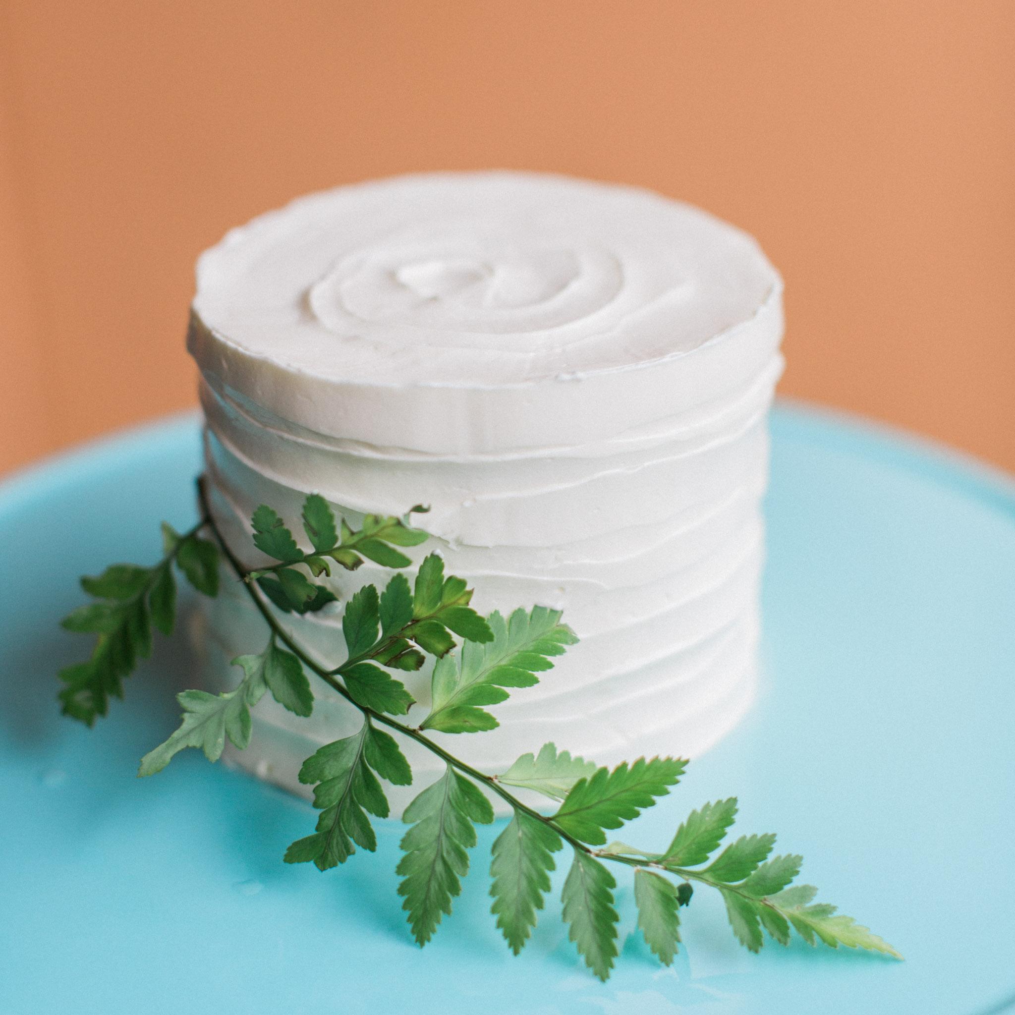 Wedding-Cake-Tasting-4-inch-cake-Marie-Shannon-Confections-Rhianna-Mercier-Photography -1.jpg