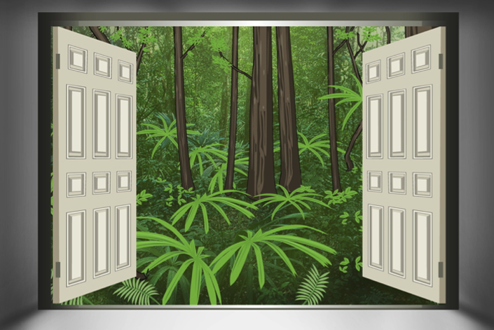 open-forest.png