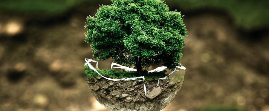 5-beautiful-eco-friendly-infographics