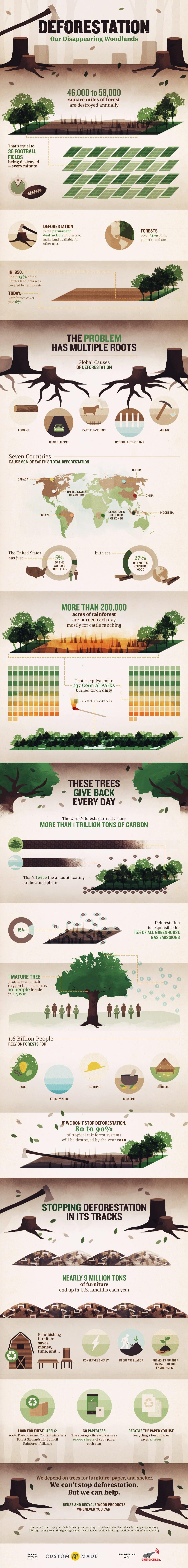 custom-made-deforestation.jpg