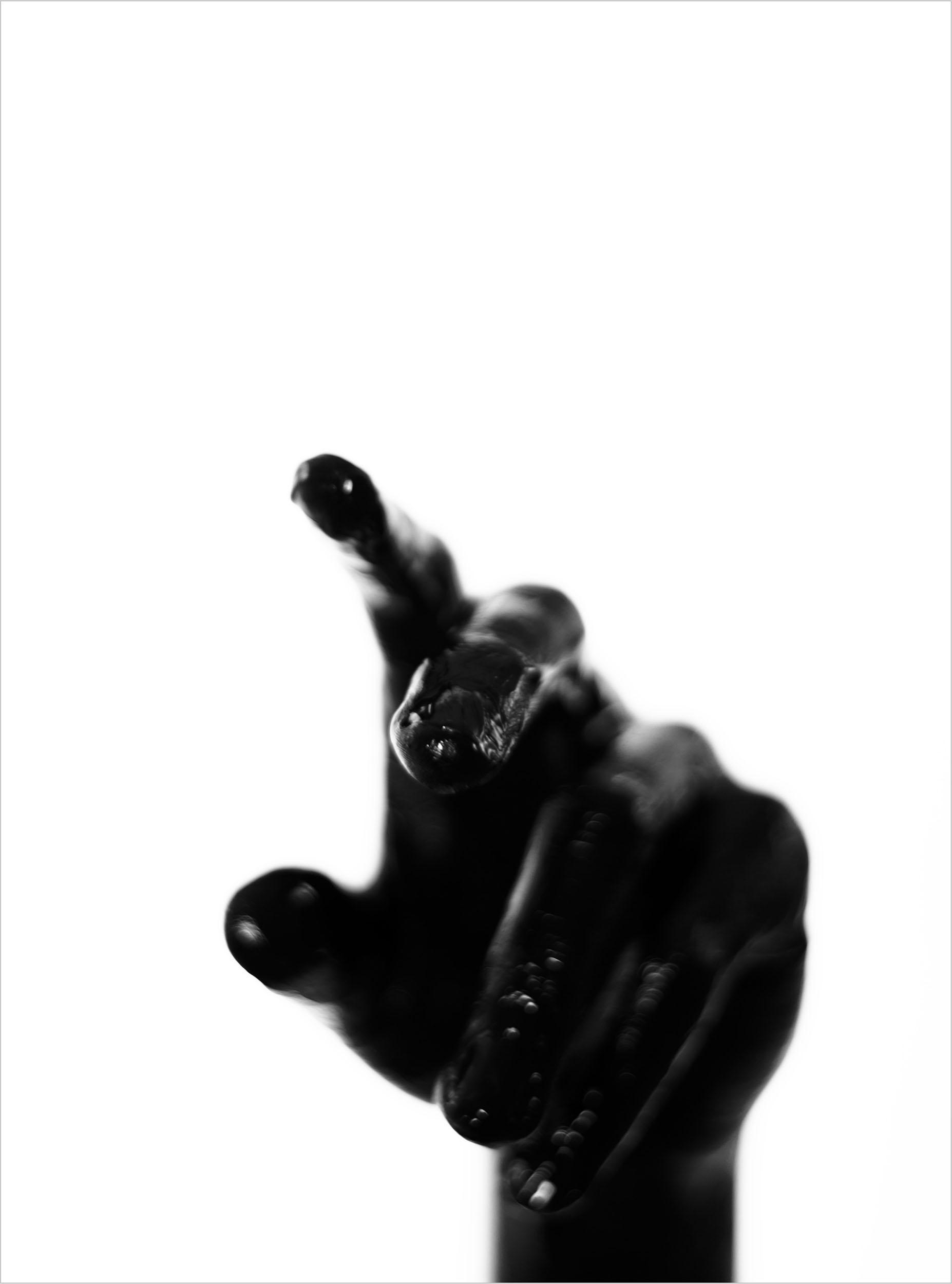 Hand-2.jpg
