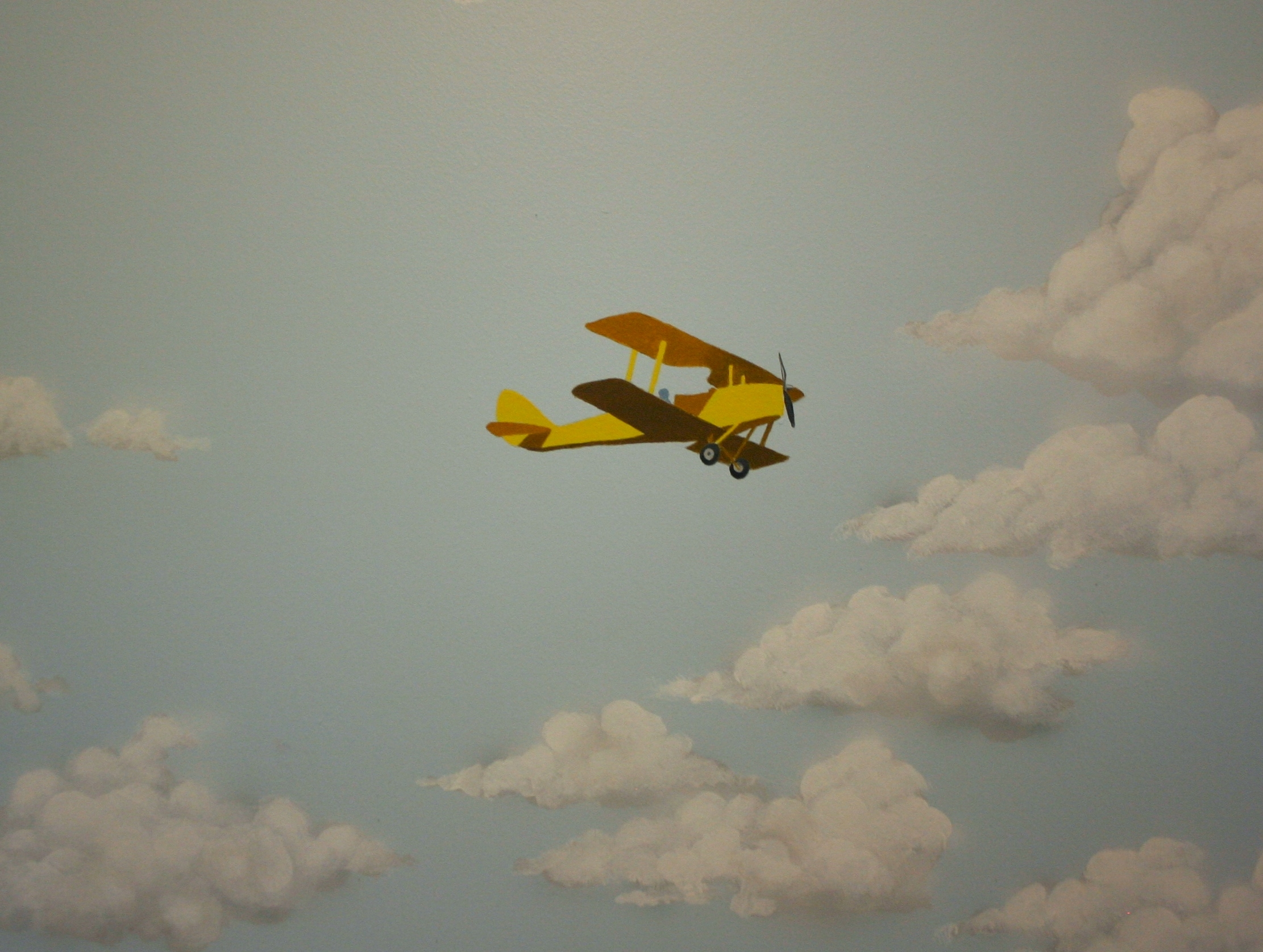 Small plane detail