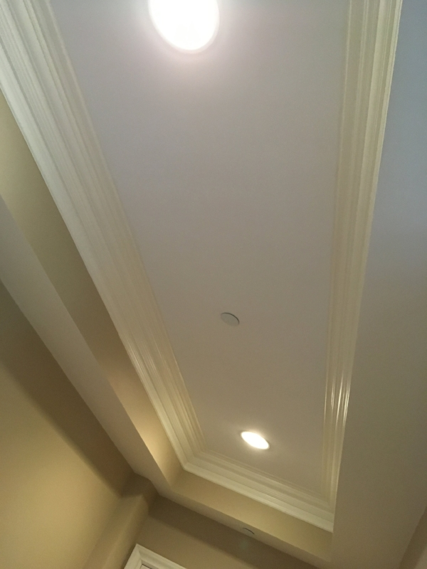 Hall ceiling before