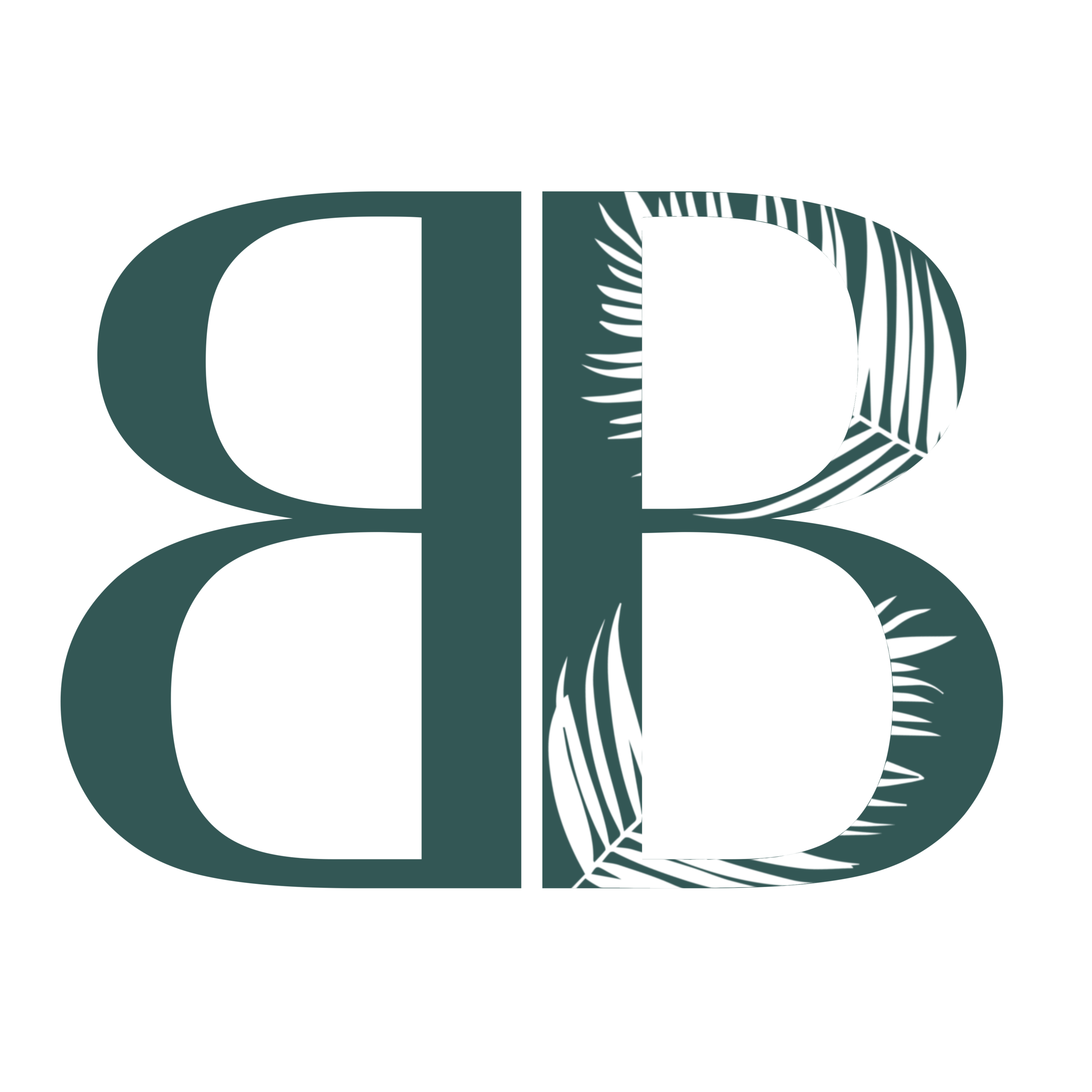 Logo BBs.png