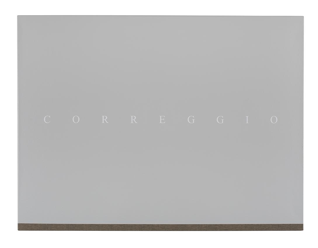 PJ HICKMAN Correggio 2014 Acrylic on reverse of black primed canvas 61 x 81.3cm.jpg