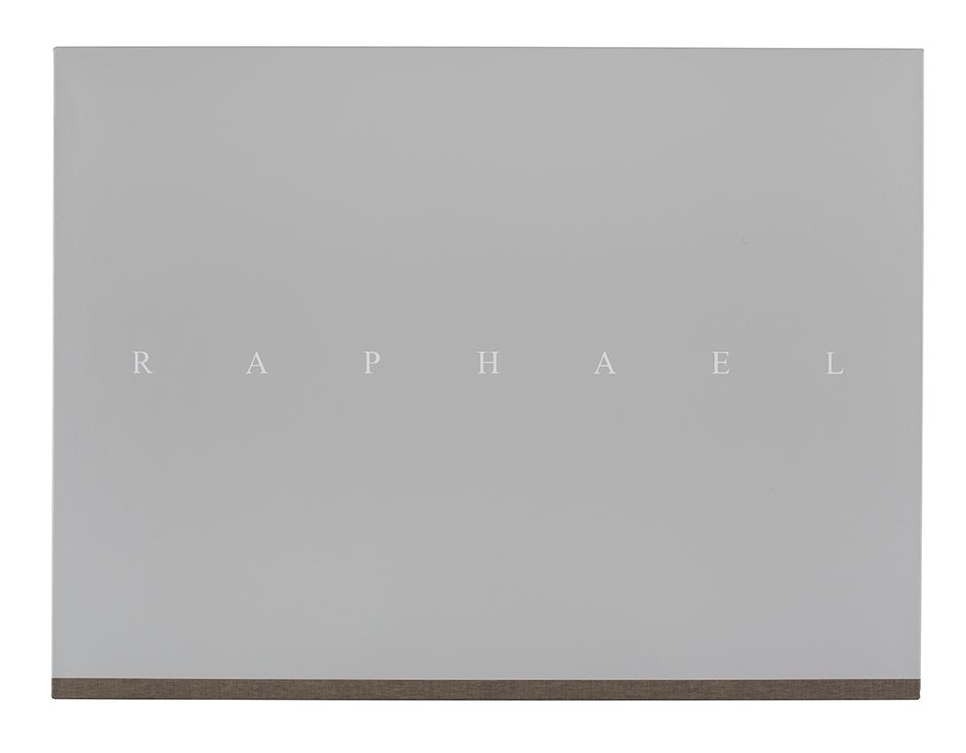 PJ HICKMAN Raphael 2014 Acrylic on reverse of black primed canvas 61 x 81.3cm.jpg