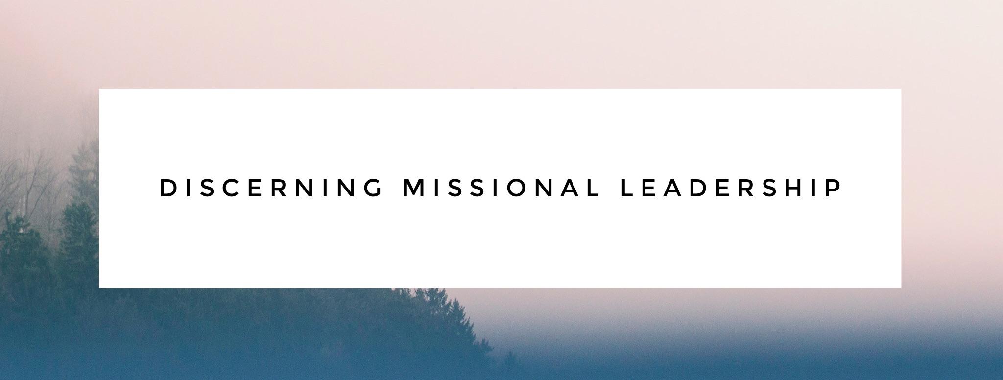 Discerning Missional Leadership.JPG