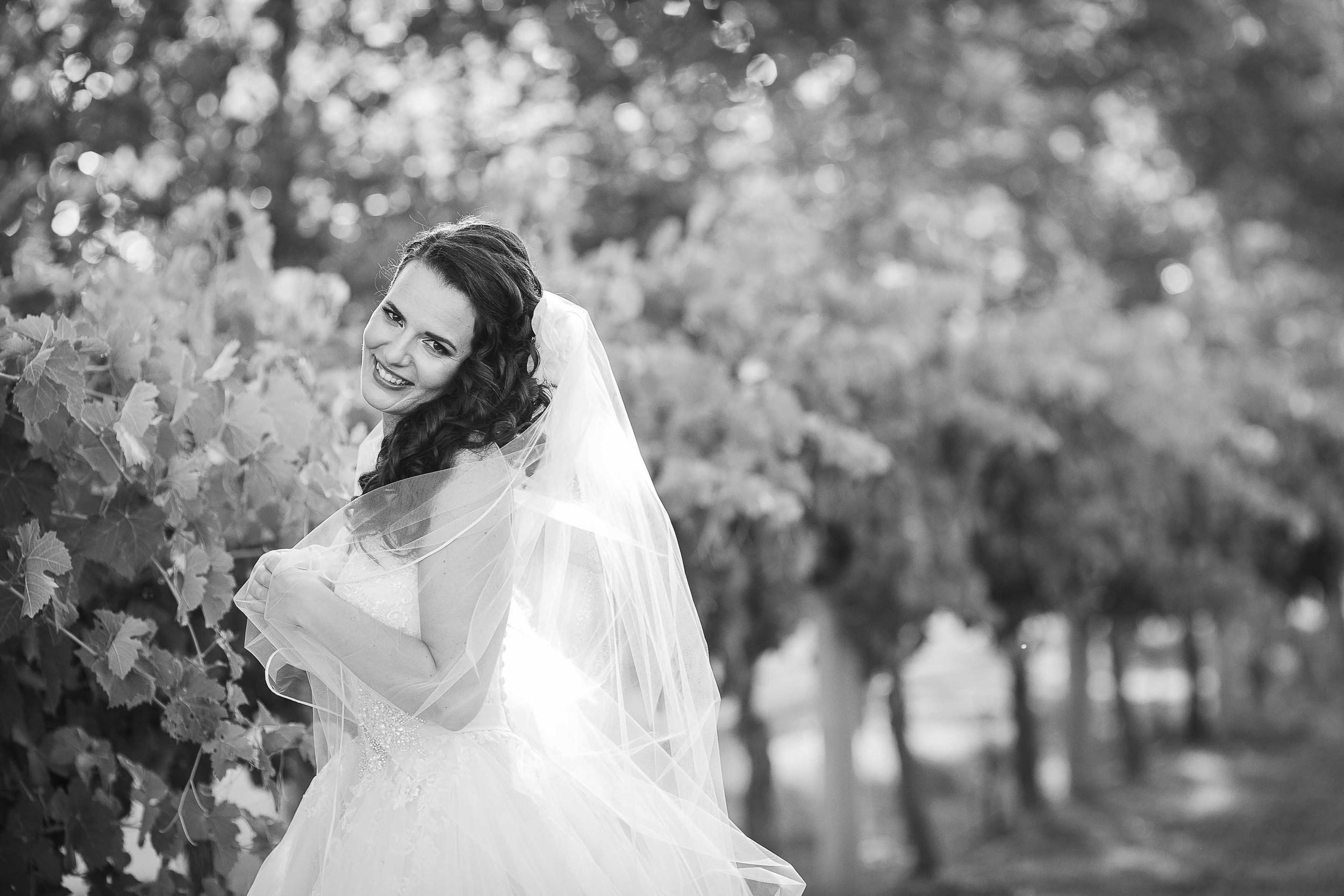 lancaster wines wedding