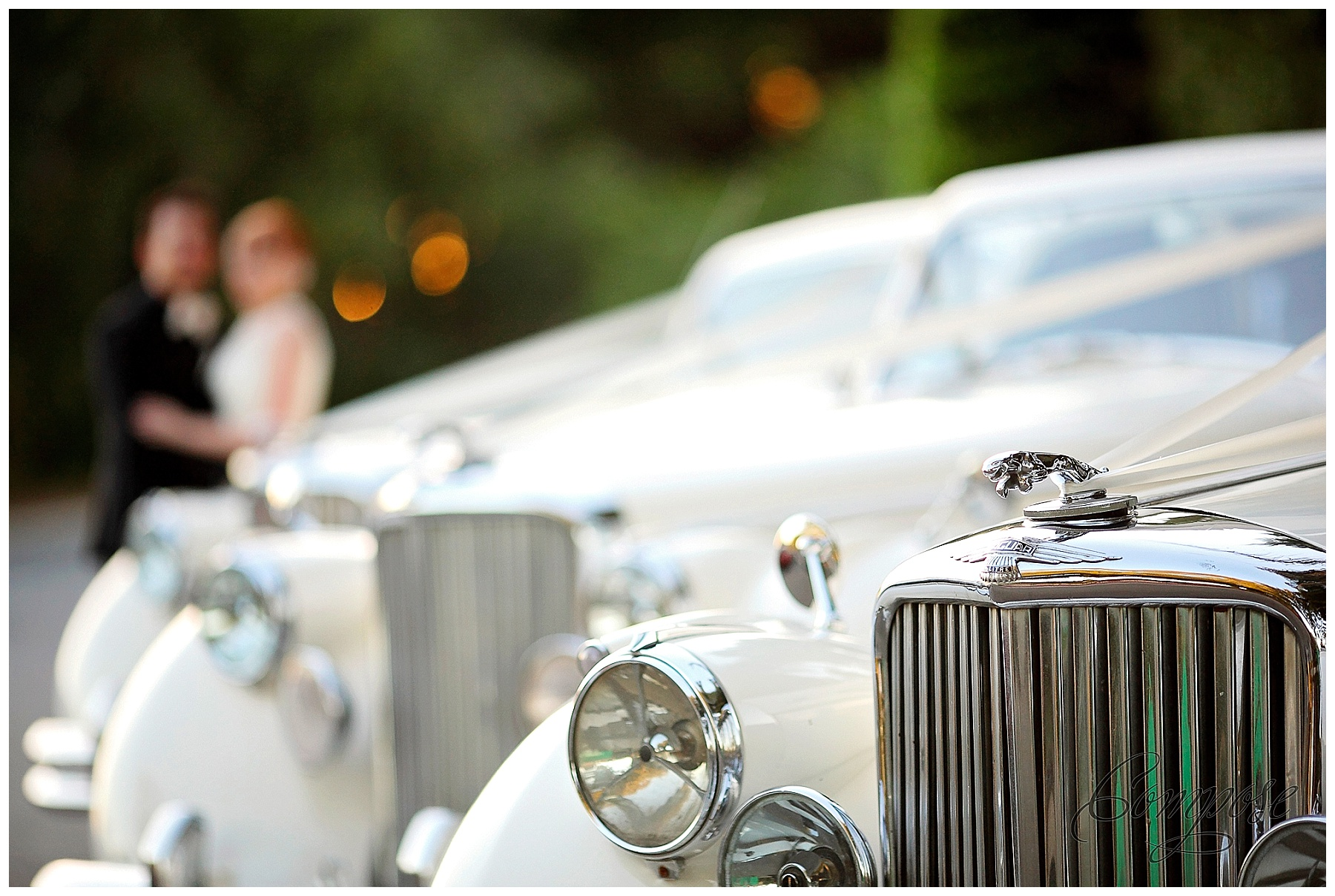 Classic Jaguar Wedding Car