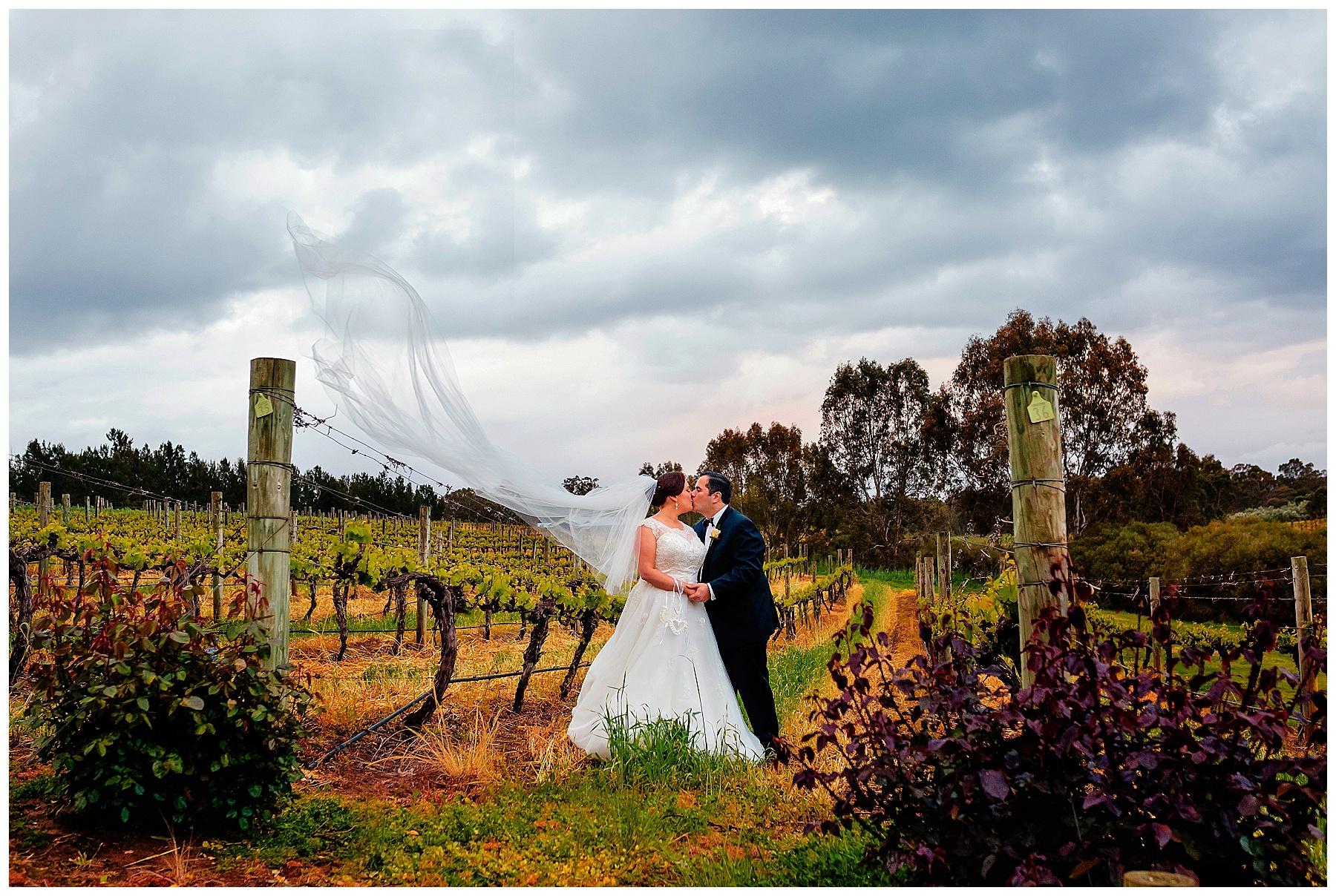Swan Valley Vineyard Wedding