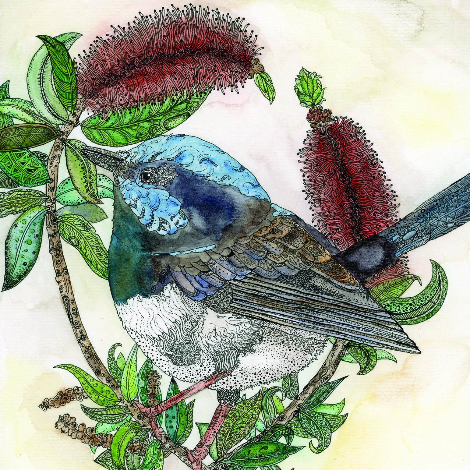 Zinia King Illustration
