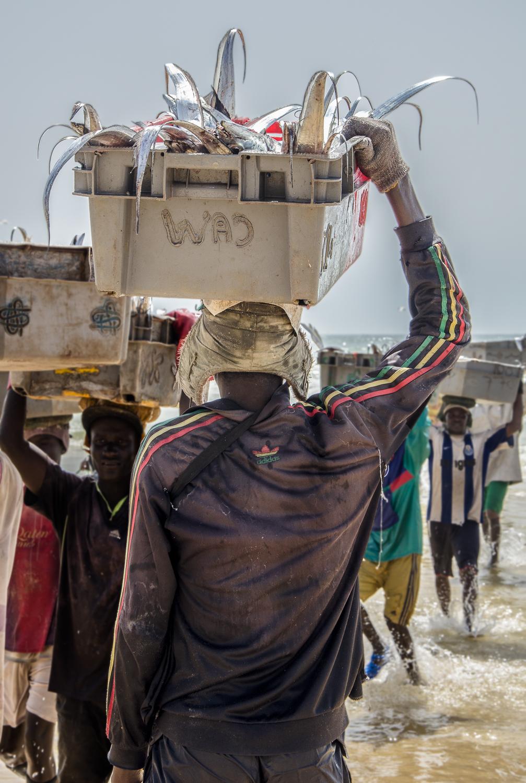 fishermen-carrying (1 of 1).jpg