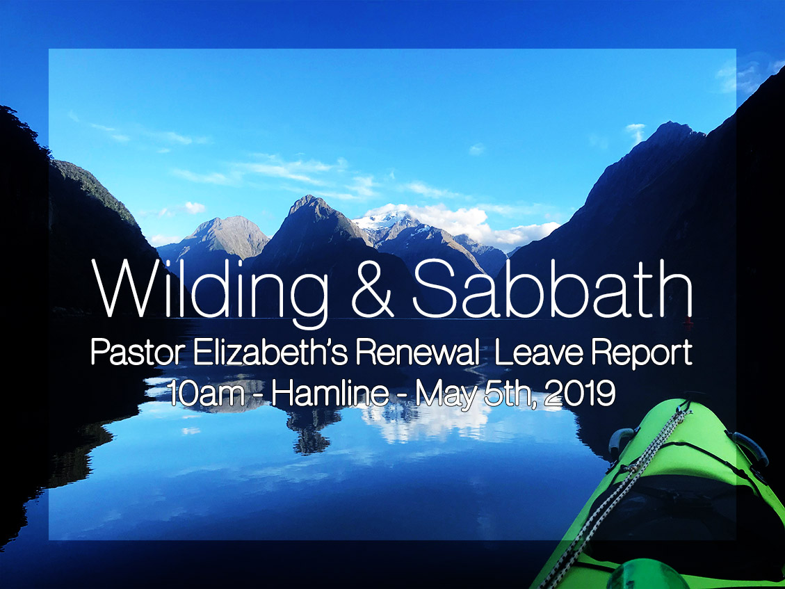 As Part of Pastor Elizabeth's Renewal Leave Grant, she will be bringing a report to share with us. Join us May 5th after the 9 o clock worship service in Hamline Room for a presentation on Wilding and Sabbath, and the importance therein.