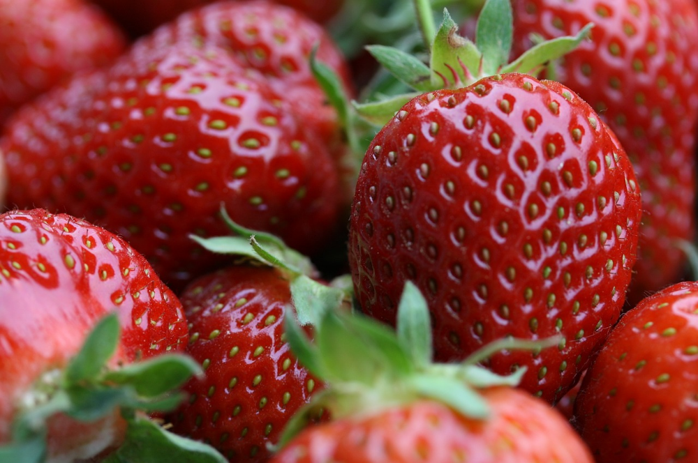 strawberries-776985_1280.jpg