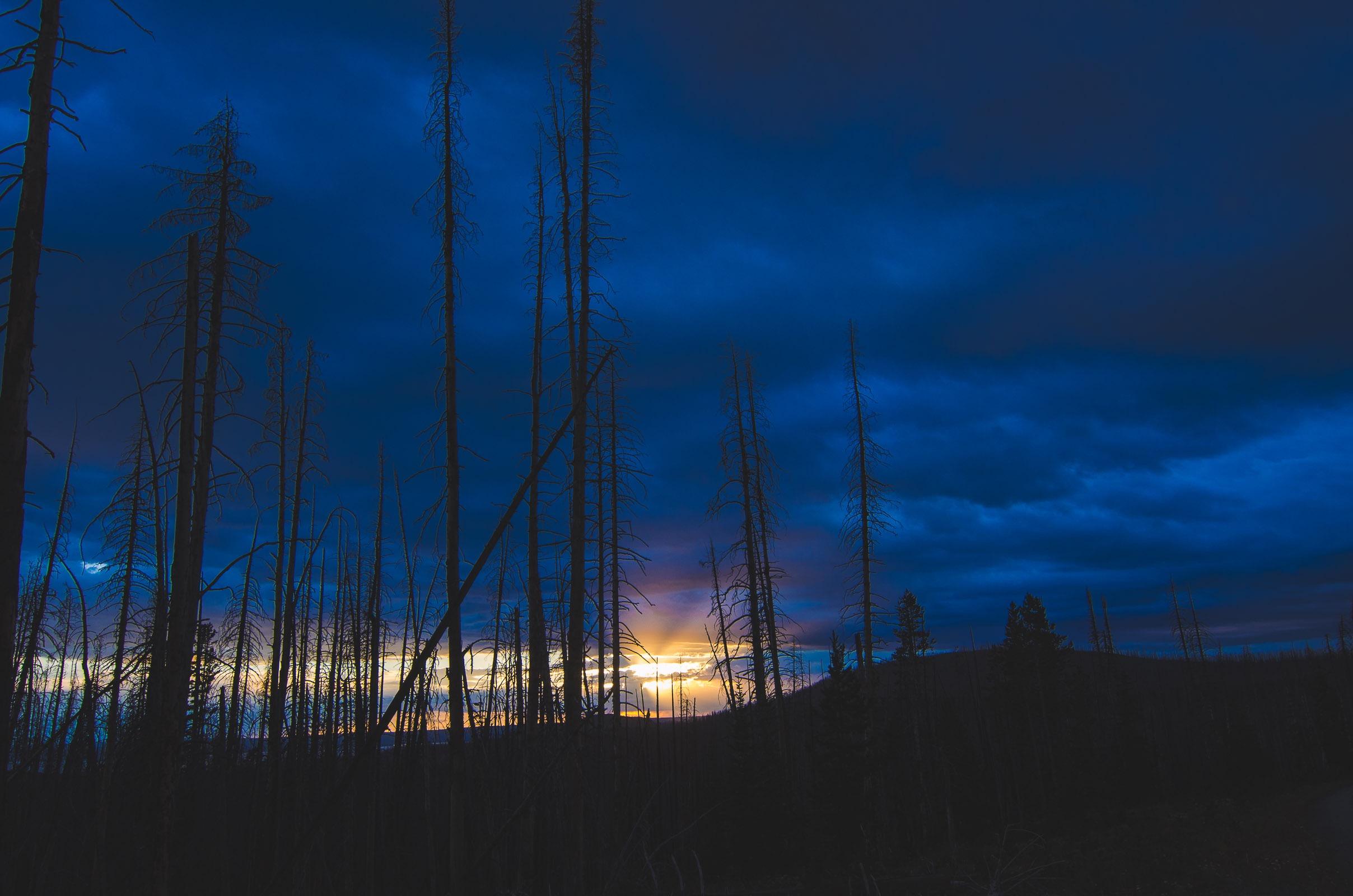 Yellowstone Trip-38.jpg