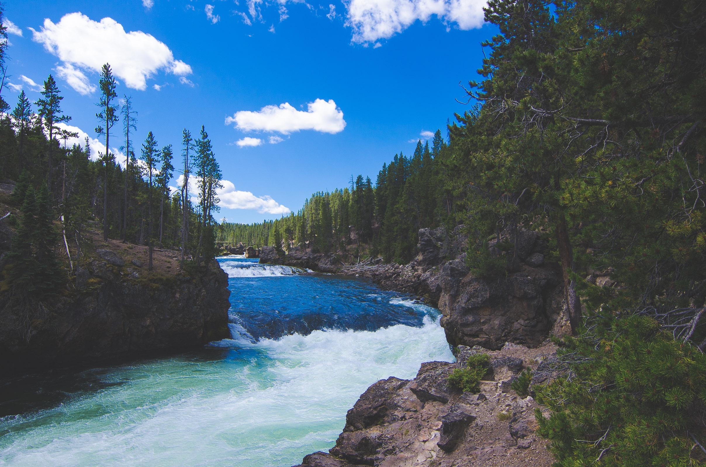 Yellowstone Trip-197.jpg