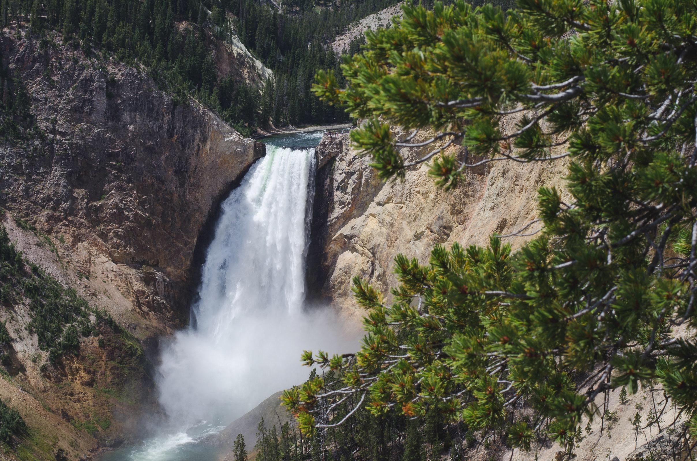Yellowstone Trip-225.jpg